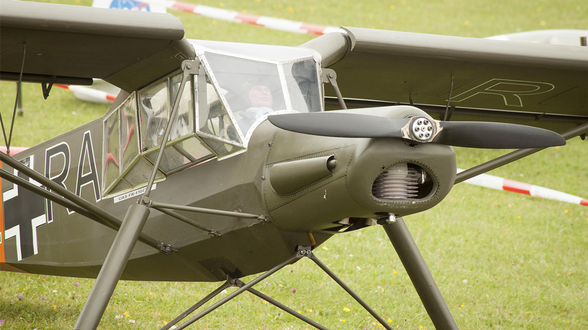 4962-Storch