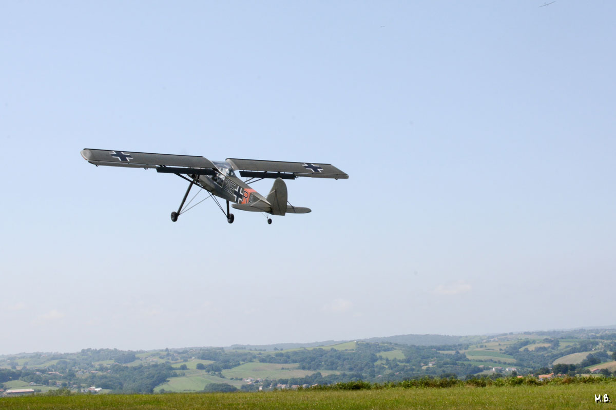 Storch-100